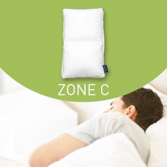 Mr.Z Free-form Pillow Zone C